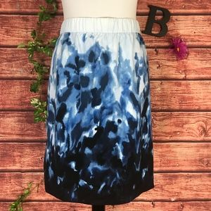 Chico's Skirt 2 10 12 Blue Navy Floral Straight